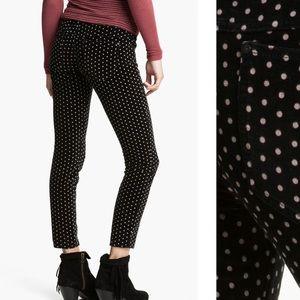 Free people polka dot velvet pants